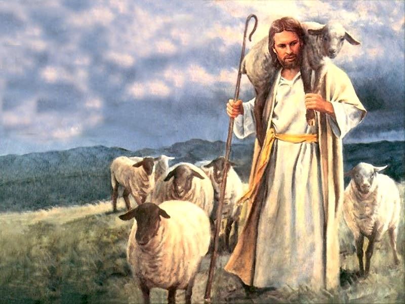 Resultado de imagem para jesus com ovelhas